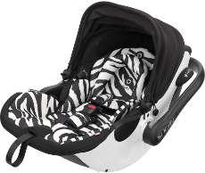 Zebra Variante